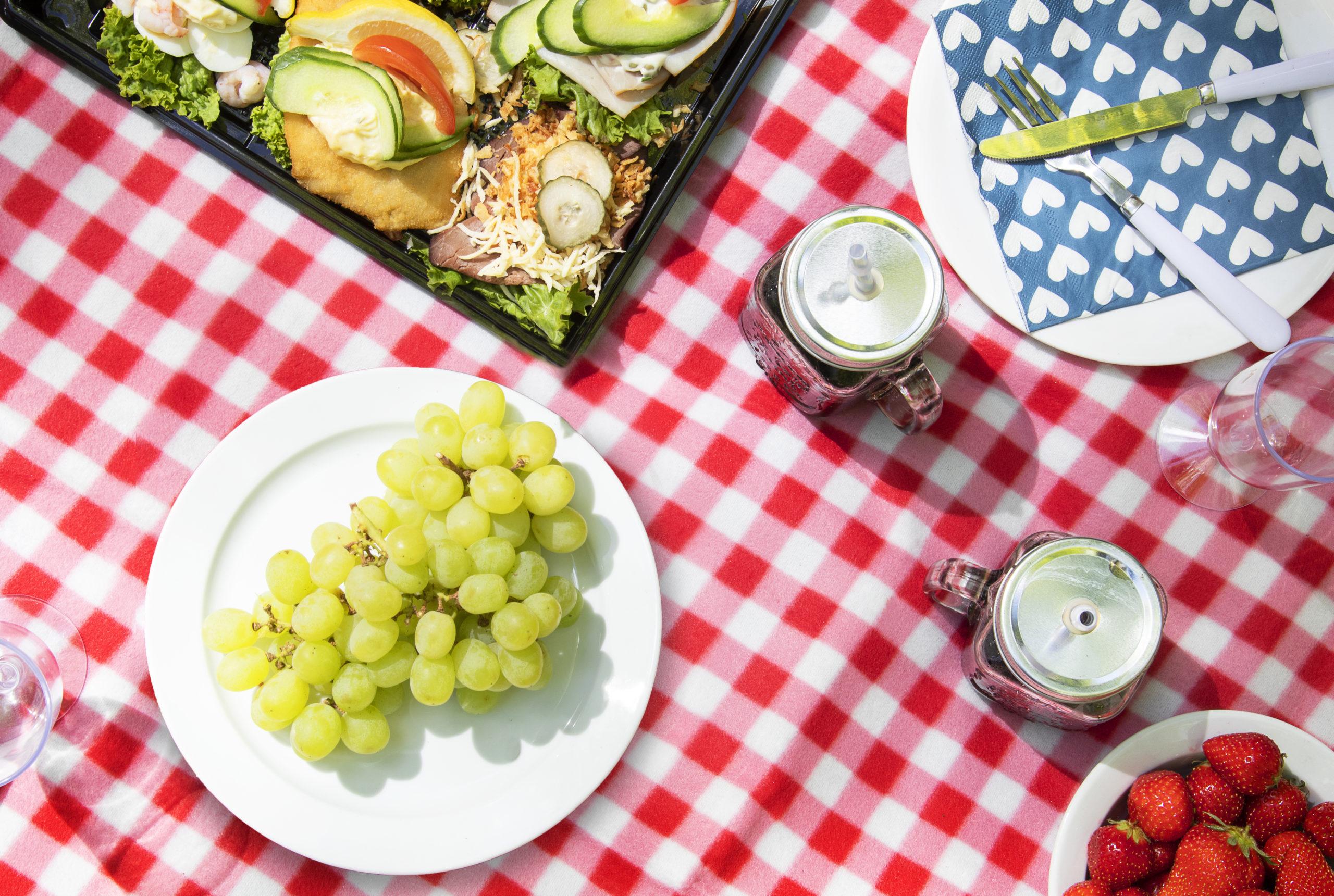 Pinse picnic med Suzuki